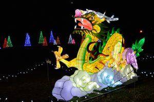 dragon-224930_1920